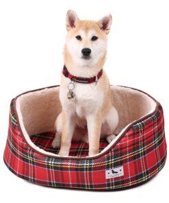 Hundehaus, Hundehütte, Hundebett, Hundekorb,Fellpflege-Handschuh, Halsband mit Schriftzug, Halsband, Hundehalsband, Hunde Zubehör, Pet-Shop, Tierhandlung, Zubehör für Haustiere, Zoohandlung, Hundeweste, halsband für hund, led halsband, Leut Halsband, Hundenapf, Fressnapf, Katzenbaum, Hundegeschier, Hundefutter, Tier Equipment, Hunde Spielzeug, Fressnapf, Haustiere, Zubehör für Haustiere, Tierwelt, Animalia, Lederhalsband, Halsband, Haustierzubehör, Haustierspielzeug, Halsband gravieren, Halsband mit Gravur
