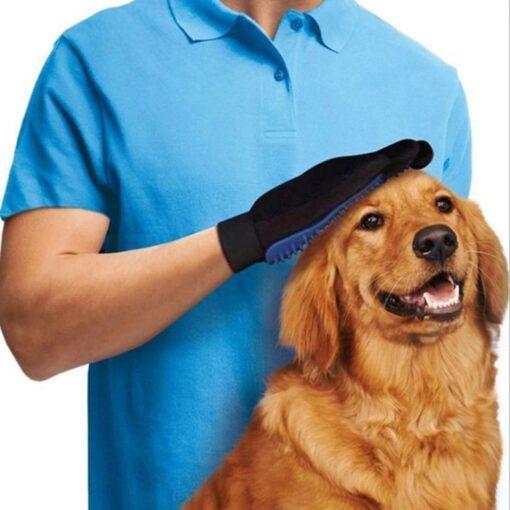 Fellpflege-Handschuh, Halsband mit Schriftzug, Halsband, Hundehalsband, Hunde Zubehör, Pet-Shop, Tierhandlung, Zubehör für Haustiere, Zoohandlung, Hundeweste, halsband für hund, led halsband, Leut Halsband, Hundenapf, Fressnapf, Katzenbaum, Hundegeschier, Hundefutter, Tier Equipment, Hunde Spielzeug, Fressnapf, Haustiere, Zubehör für Haustiere, Tierwelt, Animalia, Lederhalsband, Halsband, Haustierzubehör, Haustierspielzeug, Halsband gravieren, Halsband mit Gravur