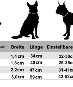 Lederhalsband für den Hund
