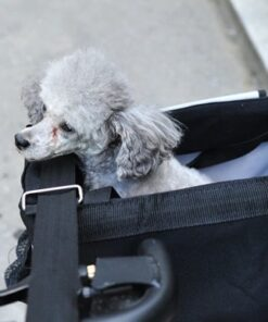Hunde-Sicherheitsgurt Auto, Fellpflege-Handschuh, Halsband mit Schriftzug, Halsband, Hundehalsband, Hunde Zubehör, Pet-Shop, Tierhandlung, Zubehör für Haustiere, Zoohandlung, Hundeweste, halsband für hund, led halsband, Leut Halsband, Hundenapf, Fressnapf, Katzenbaum, Hundegeschier, Hundefutter, Tier Equipment, Hunde Spielzeug, Fressnapf, Haustiere, Zubehör für Haustiere, Tierwelt, Animalia, Lederhalsband, Halsband, Haustierzubehör, Haustierspielzeug, Halsband gravieren, Halsband mit Gravur