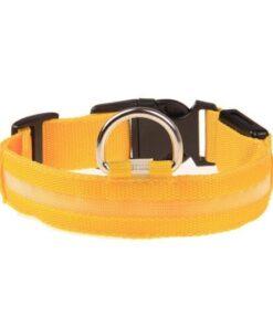 LED Hunde Halsband, Tierbedarf Shop Schweiz