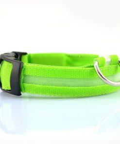 Hund Halsband LED Licht