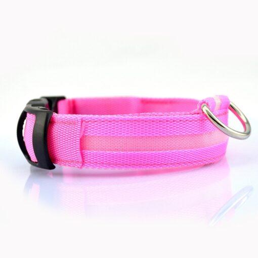 LED Hundehalsband pink