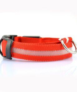 LED Hundehalsband Rot
