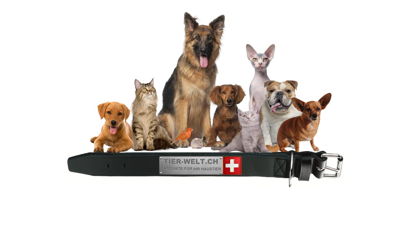 Tier Welt, Halsband, Hundehalsband, Hunde Zubehör, Pet-Shop, Tierhandlung, Zubehör für Haustiere, Zoohandlung, Hundeweste, halsband für hund, led halsband, Leut Halsband, Hundenapf, Fressnapf, Katzenbaum, Hundegeschier, Hundefutter, Tier Equipment, Hunde Spielzeug, Fressnapf, Haustiere, Zubehör für Haustiere, Tierwelt, Animalia, Lederhalsband, Halsband, Haustierzubehör, Haustierspielzeug,