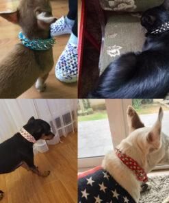 Hunde-Sicherheitsgurt Auto, Fellpflege-Handschuh, Halsband mit Schriftzug, Halsband, Hundehalsband, Hunde Zubehör, Pet-Shop, Tierhandlung, Zubehör für Haustiere, Zoohandlung, Hundeweste, halsband für hund, led halsband, Leut Halsband, Hundenapf, Fressnapf, Katzenbaum, Hundegeschier, Hundefutter, Tier Equipment, Hunde Spielzeug, Fressnapf, Haustiere, Zubehör für Haustiere, Tierwelt, Animalia, Lederhalsband, Halsband, Haustierzubehör, Haustierspielzeug, Halsband gravieren, Halsband mit Gravur, Ferngesteuerte-Maus, Hunde-Halsband mit Nieten,