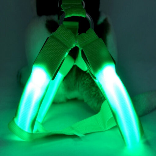 LED-Hundeweste, LED-Hundegeschirr, Hundeweste mit LED, Hundegeschirr mit LED