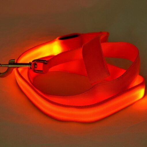 LED-Hundeleine, LED-Leine für Hunde