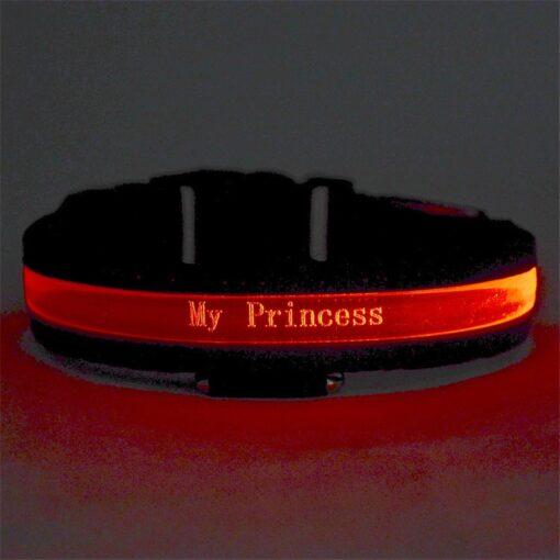 Lichtreflektierendes Hundehalsband, Halsband mit Name Gravieren, Hundehalsband personalisierbar