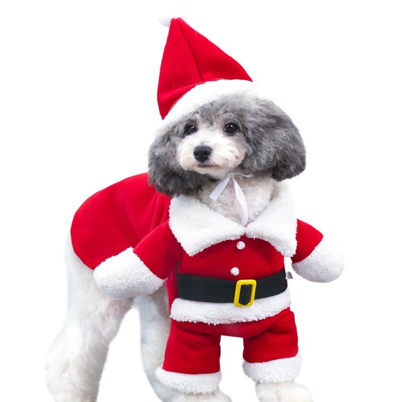 Hundekostüm Weihnachten Hunde