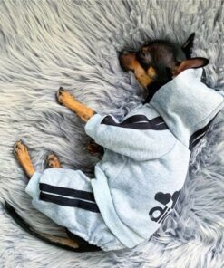 Hunde Pullover, Hunde Adidog Trainer, Hoodie für Hunde