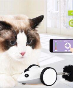 Ferngesteuerte Maus, Haustier Spielzeug, Spielzeuge für Haustiere, Hundespielzeug, Katzenspielzeuge