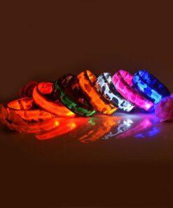 Leuchtendes Halsband LED, LED-Halsband für Hunde