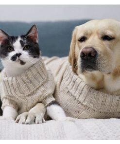 Pullover für Hunde, Hundepullover, Hunde Kleider, Hundejacke, Strickjacke für Hunde, hundemantel schweiz, hundepullover mit kapuze, regenmantel hund, hundebekleidung, hundebekleidung online shop schweiz, hundebekleidung winter, hundepullover gestrickt, hundebekleidung schweiz