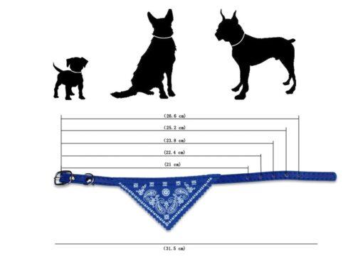 Hundehalsband, Hundehalstuch, Onlineshop für Tierbedarf in der Schweiz
