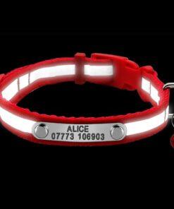 Hundehalsband mit Gravur, Hundehalsband mit Name, Personalisierbares Halsband für Haustiere, Halsband mit persönlichem Name