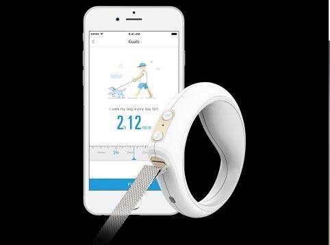 Hundeleine mit Taschenlampe LED, Taschenlampe-Hundeleine, Hundeleine mit integrierter Taschenlampe, GO Bluetooth smart leash