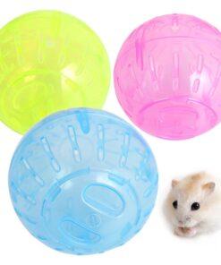 Hamsterball kaufen Schweiz
