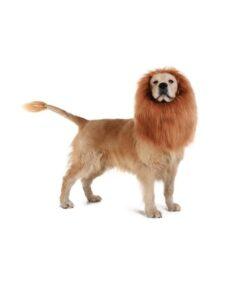 Löwenmähne Perücke für Hunde