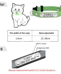 Halsband für Katze mit Gravur