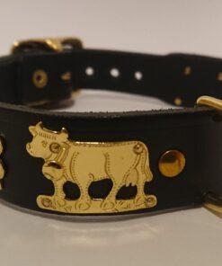 Appenzeller Hundehalsband