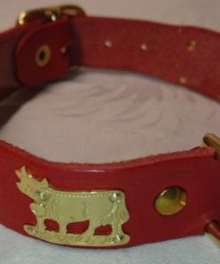 Appenzeller Hundehalsband, Echtleder, kaufen Schweiz