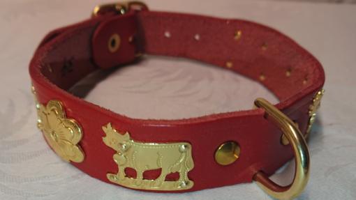 Appenzeller Hundehalsband, Lederhalsband Appenzell, Appenzeller Leder Hundehalsband