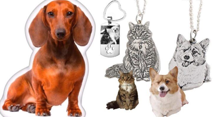 Fotodruck Artikel Haustier, onlineshop