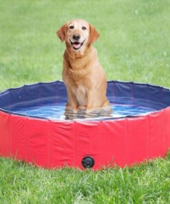 Hunde-Pool, Pool für Hunde, swimming-pool für Hunde, Hunde-Schwimmbad, kaufen schweiz