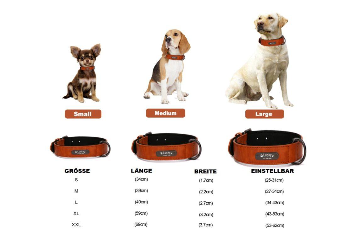 Hundehalsband mit Namensschild Schweiz
