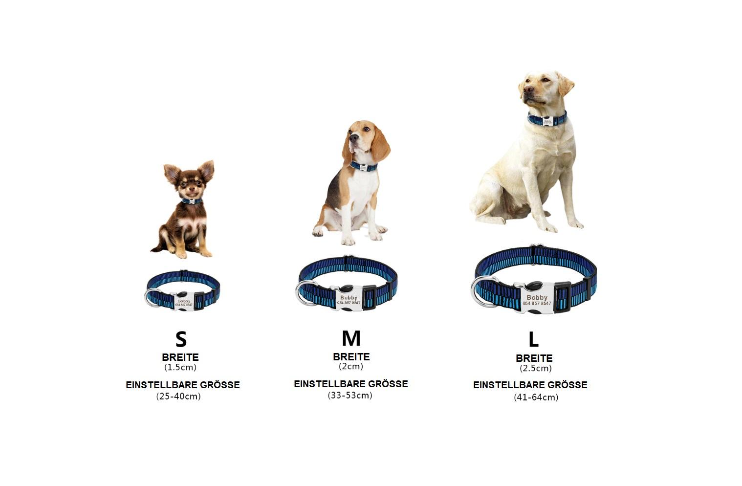 Hunde Halsband mit Gravur, Personalisierbar Schweiz