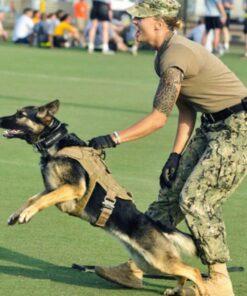 Taktisches Militär Hunde Geschirr