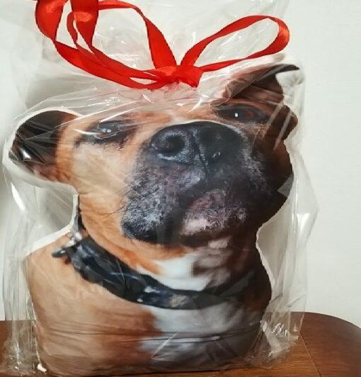 Fotodruck-Kissen, eigenes Haustier drucken, Plüschkissen vom Haustier