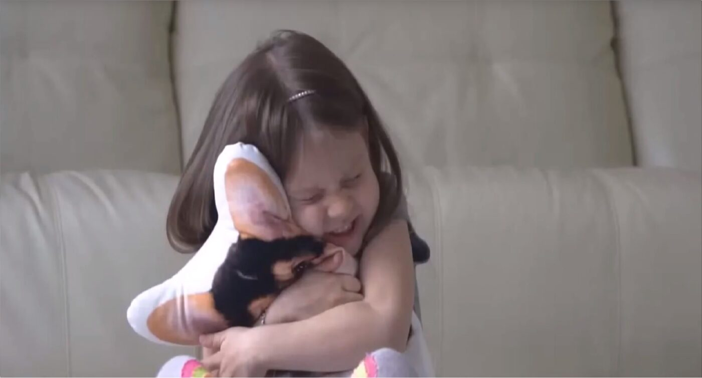 Fotodruck-Kissen Haustier-Kissen Druck 3d kissen