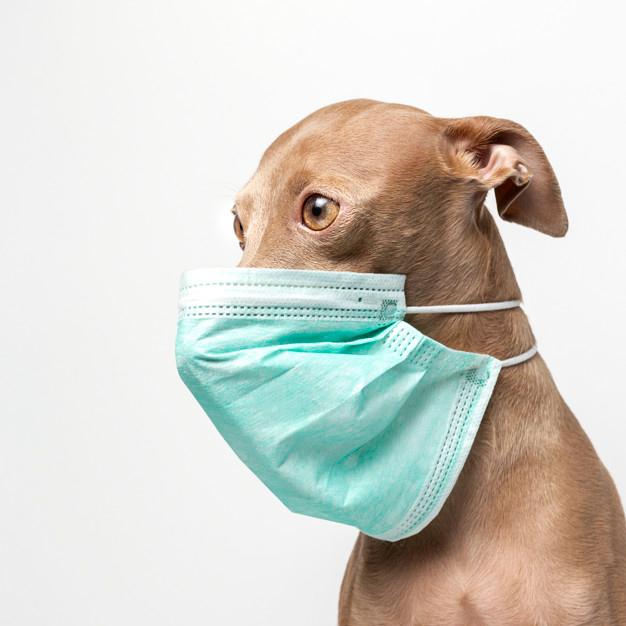 Hygienemasken-coronavirus-schutzmaske