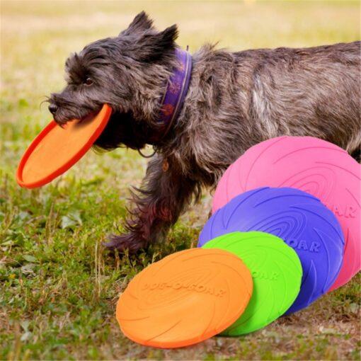 Hunde-Frisbee, zum Apportieren, Trainieren, Schweiz