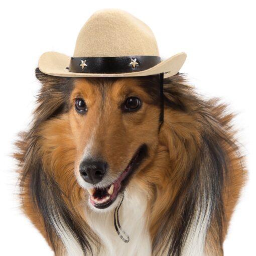 Hunde Hut Cowboy