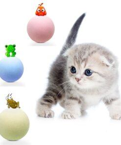 Katzenspielzeug Ball Katzenminze