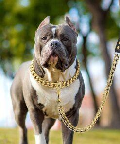 Goldkette Hundeleine