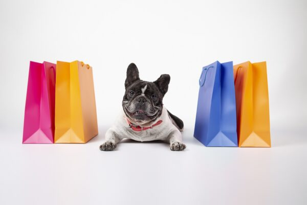 Hundehalsband mit Name Günstig