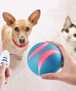 Interaktiver Katzen Spielzeug Smart-Ball