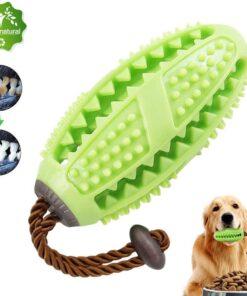 Hunde Zahnreinigungs-Ball