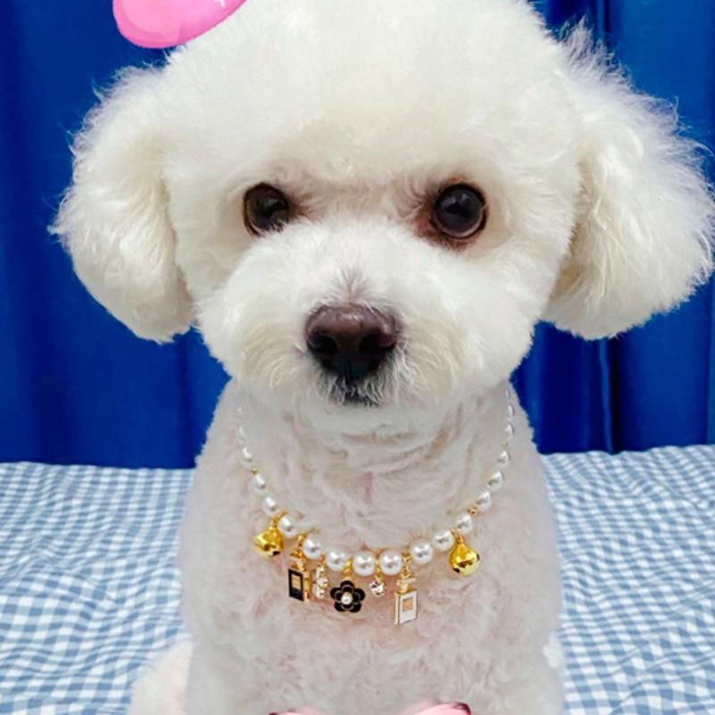 Hunde Luxus Schmuck Halskette