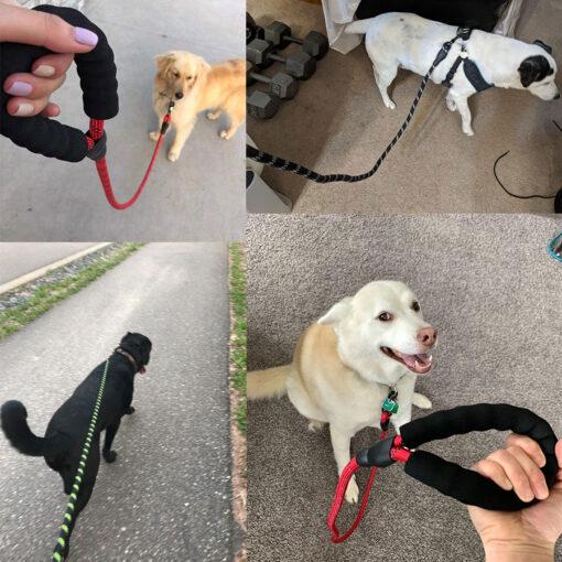 Stabile Hundeleine grosse Hunde