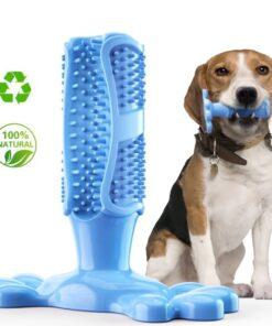 Hunde Zahnreinigung Kauknochen blau