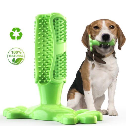 Hunde Zahnreinigung Kauknochen grün