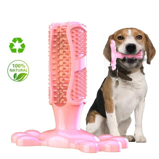 Zahnreinigung Kauknochen für Hunde