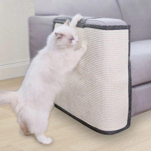 Sofa Krallenschutz Katze