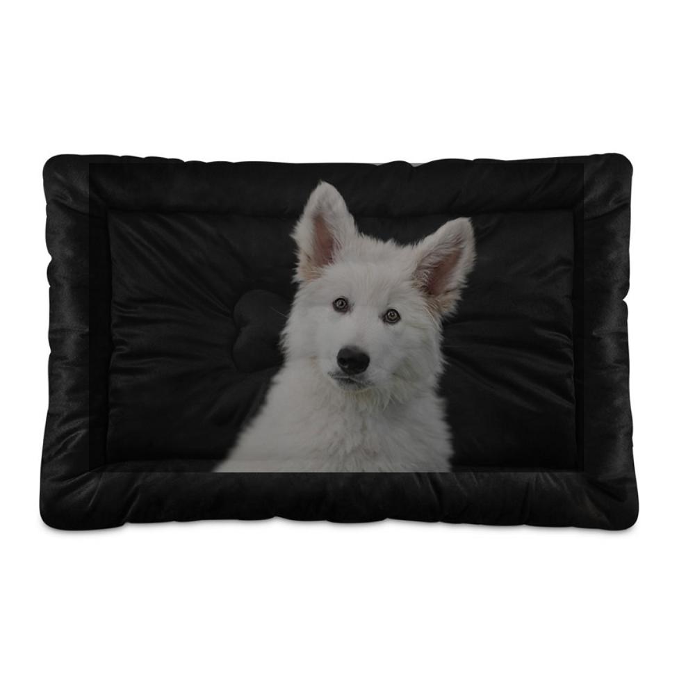 Hundebett Katzenbett mit eigenem Foto Bild